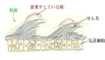 連載童話「たばこ王国」第5回 文・絵:吉田 仁